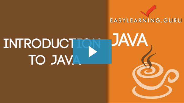 Java Programming Video Image