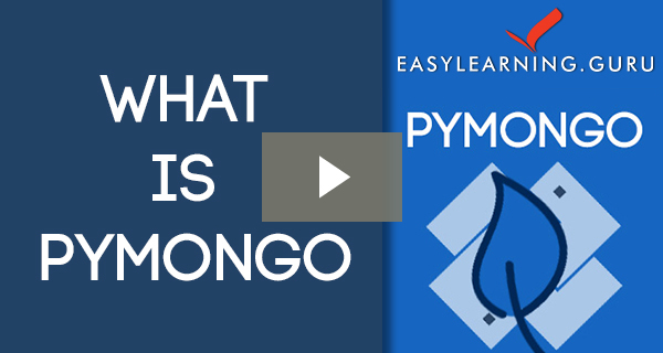 Python with Mongo Video Image