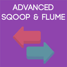 Self-paced Sqoop and Flume Course & Certification
